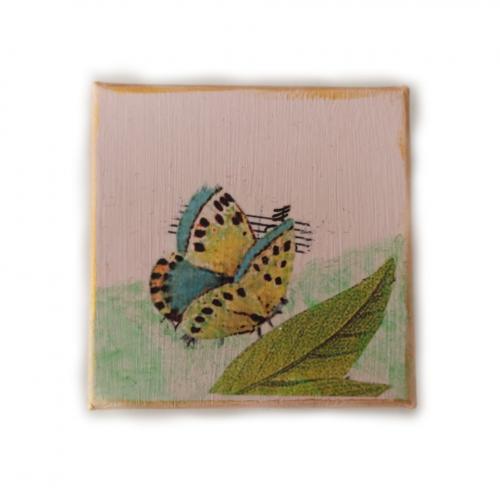 Κουτάκι πεταλούδα (Ντεκουπάζ)